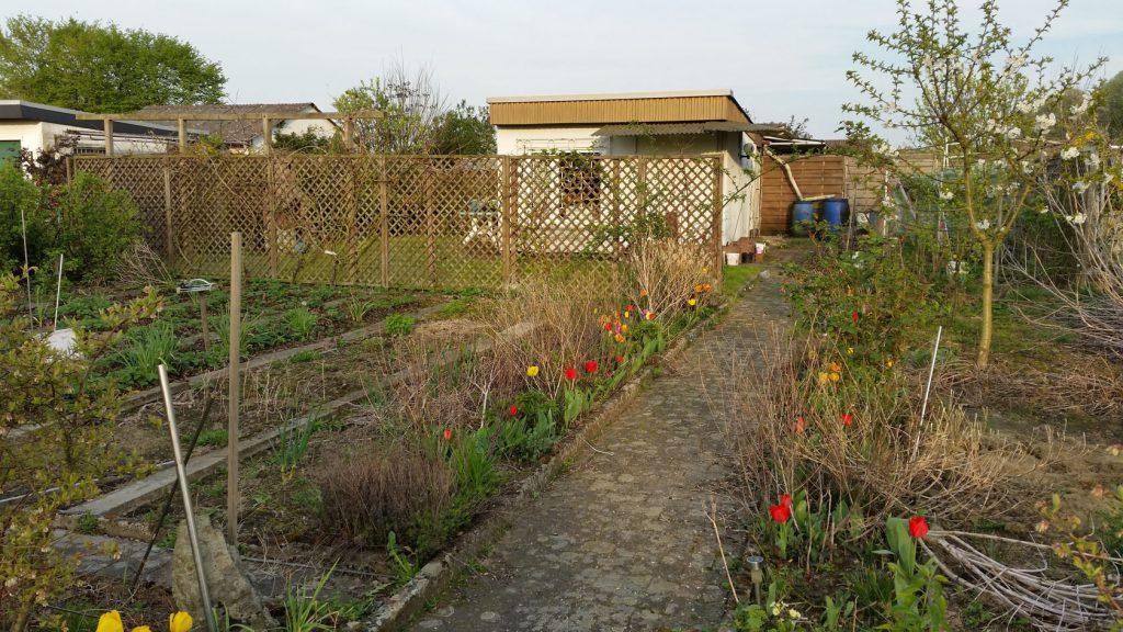 Garten Nr. 25